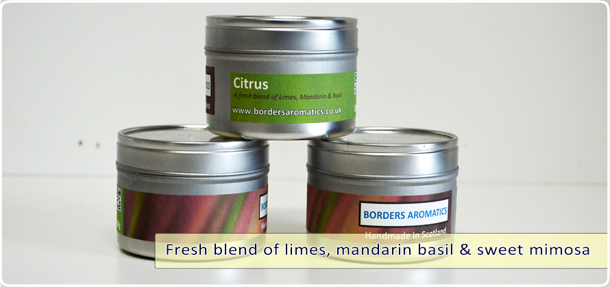 Citrus Travel Tin
